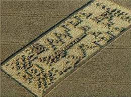 El fenómeno de los círculos en las cosechas también conocidos como Crop Circles, 10