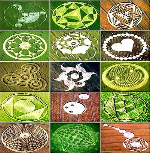 El fenómeno de los círculos en las cosechas también conocidos como Crop Circles, 6